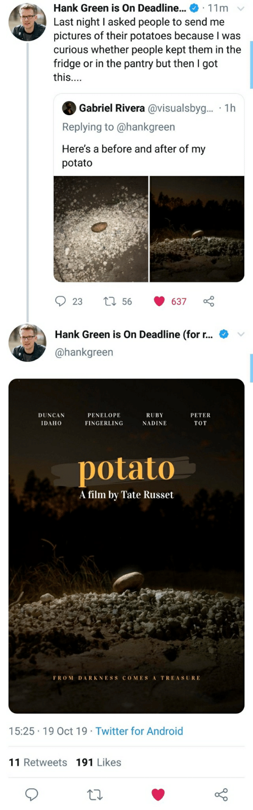 Android, Twitter, and Pictures: Hank Green is On Deadline... 11m  Last night I asked people to send me  pictures of their potatoes because I was  curious whether people kept them in the  fridge or in the pantry but then I got  this...  Gabriel Rivera @visualsbyg... 1h  Replying to @hankgreen  Here's a before and after of my  potato  56  23  637  Hank Green is On Deadline (for r...  @hankgreen  DUNCAN  PENELOPE  RUBY  PETER  IDAHO  FINGERLING  NADINE  TOT  potato  A film by Tate Russet  FROM DARKNESS COMES A  TREASURE  15:25 19 Oct 19 Twitter for Android  11 Retweets 191 Likes