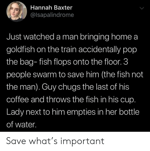3 People: Hannah Baxter  @lsapalindrome  Just watched a man bringing home a  goldfish on the train accidentally pop  the bag- fish flops onto the floor. 3  people swarm to save him (the fish not  the man). Guy chugs the last of his  coffee and throws the fish in his cup.  Lady next to him empties in her bottle  of water. Save what's important