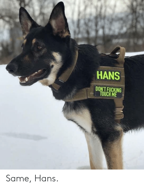 Fucking, Touch, and Same: HANS  DON'T FUCKING  TOUCH ME Same, Hans.