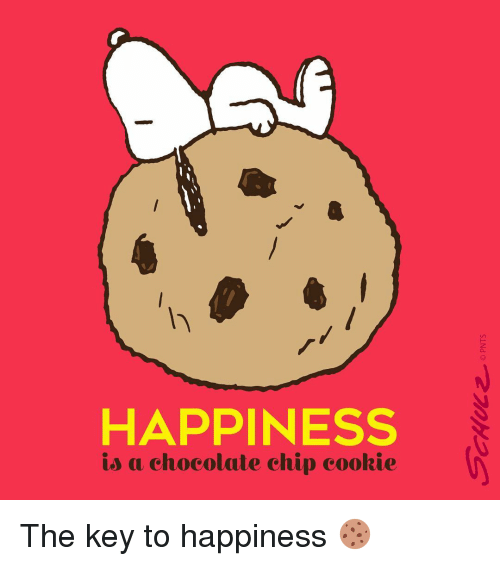 Cookiness: HAPPINESS  is a chocolate chip cookie The key to happiness 🍪