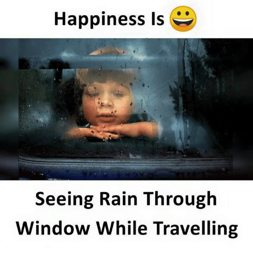 Memes, Rain, and Happiness: Happiness is  Seeing Rain Through  Window While Travelling