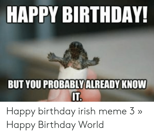 25 Best Memes About Irish Happy Birthday Meme Irish Happy
