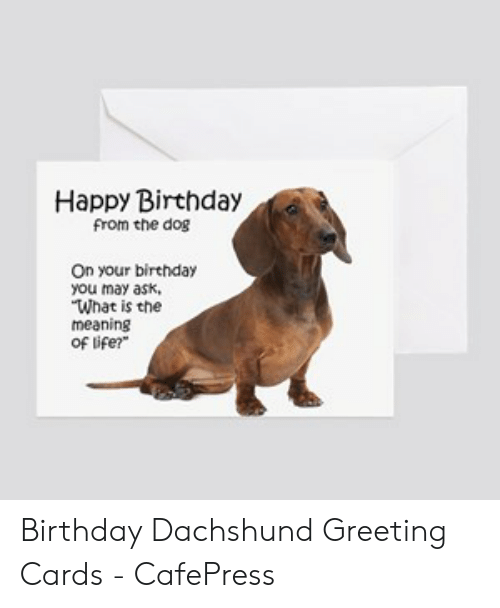 Happy Birthday From The Dog On Your Birthday You May Ask What Is The Meaning Of Ife Birthday Dachshund Greeting Cards Cafepress Birthday Meme On Awwmemes Com