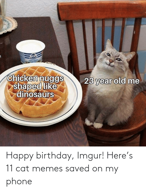 Cat Memes: Happy birthday, Imgur! Here's 11 cat memes saved on my phone