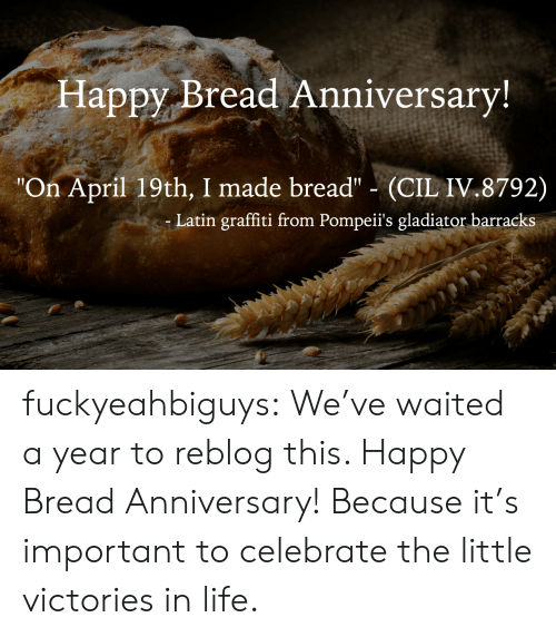 """Gladiator, Graffiti, and Life: Happy Bread Anniversary  """"On April 19th, I made bread"""" (CIL IV.8792)  Latin graffiti from Pompeii's gladiator barracks fuckyeahbiguys:  We've waited a year to reblog this. Happy Bread Anniversary! Because it's important to celebrate the little victories in life."""