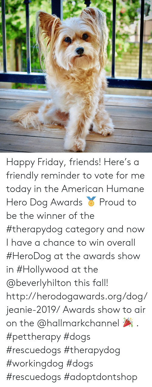 Hallmarkchannel: Happy Friday, friends!  Here's a friendly reminder to vote for me today in the American Humane Hero Dog Awards 🏅 Proud to be the winner of the #therapydog category and now I have a chance to win overall #HeroDog at the awards show in #Hollywood at the @beverlyhilton this fall!  http://herodogawards.org/dog/jeanie-2019/ Awards show to air on the @hallmarkchannel 🎉 . #pettherapy #dogs  #rescuedogs #therapydog #workingdog #dogs #rescuedogs #adoptdontshop
