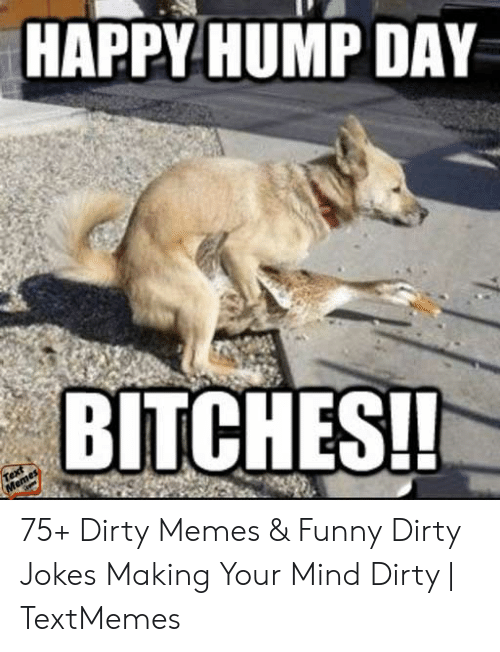 Funny Sex Memes: HAPPY HUMP DAY  BITCHES! 75+ Dirty Memes & Funny Dirty Jokes Making Your Mind Dirty | TextMemes