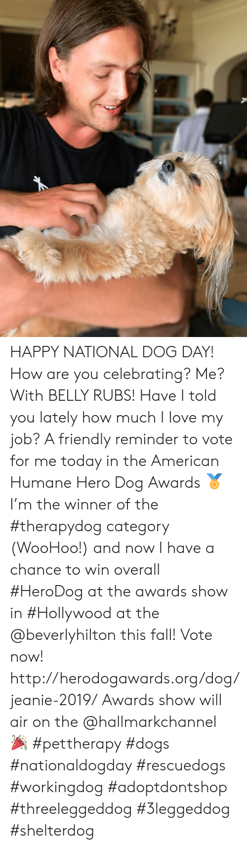 Hallmarkchannel: HAPPY NATIONAL DOG DAY!  How are you celebrating? Me? With BELLY RUBS!   Have I told you lately how much I love my job? A friendly reminder to vote for me today in the American Humane Hero Dog Awards 🏅 I'm the winner of the #therapydog category (WooHoo!) and now I have a chance to win overall #HeroDog at the awards show in #Hollywood at the @beverlyhilton this fall! Vote now! http://herodogawards.org/dog/jeanie-2019/ Awards show will air on the @hallmarkchannel 🎉  #pettherapy #dogs #nationaldogday  #rescuedogs #workingdog #adoptdontshop    #threeleggeddog #3leggeddog #shelterdog