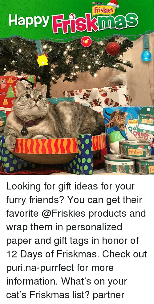 Memes, 🤖, and Furry: Happy  NNA  PURINA  Friskies  Friski  From:  Frislies Looking for gift ideas for your furry friends? You can get their favorite @Friskies products and wrap them in personalized paper and gift tags in honor of 12 Days of Friskmas. Check out puri.na-purrfect for more information. What's on your cat's Friskmas list? partner
