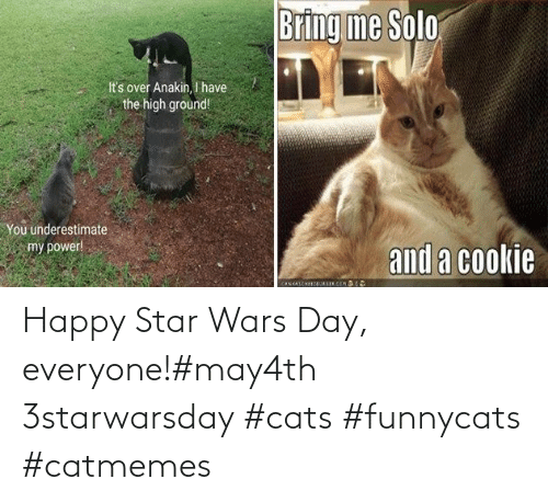 Star Wars: Happy Star Wars Day, everyone!#may4th 3starwarsday #cats #funnycats #catmemes