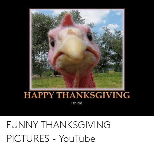 Funny, Thanksgiving, and youtube.com: HAPPY THANKSGIVING  Ithink! FUNNY THANKSGIVING PICTURES - YouTube