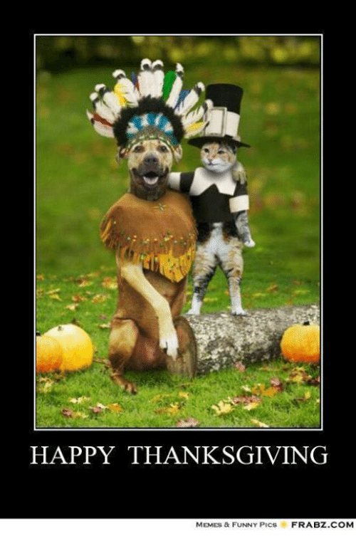 Thanksgiving Memes Funny