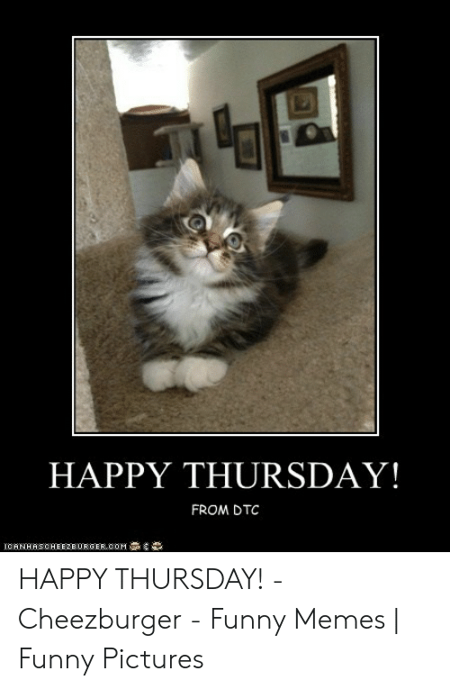 Happy Thursday From Dtc 導 Iorn Has Cheez Burger 00m Happy Thursday Cheezburger Funny Memes Funny Pictures Funny Meme On Awwmemes Com