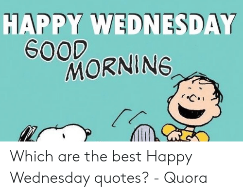 🐣 25+ Best Memes About Wednesday Quotes | Wednesday Quotes ...