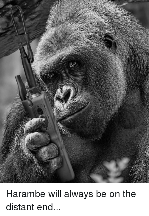 Haramber: Harambe will always be on the distant end...
