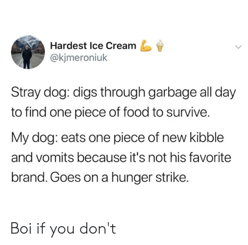 digs: Hardest Ice Cream  @kjmeroniuk  Stray dog: digs through garbage all day  to find one piece of food to survive.  My dog: eats one piece of new kibble  and vomits because it's not his favorite  brand. Goes on a hunger strike. Boi if you don't