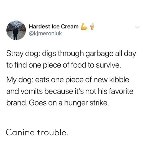 digs: Hardest Ice Cream  @kjmeroniuk  Stray dog: digs through garbage all day  to find one piece of food to survive.  My dog: eats one piece of new kibble  and vomits because it's not his favorite  brand. Goes on a hunger strike. Canine trouble.