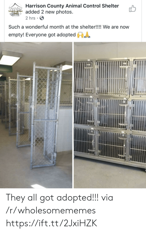 Control, Animal, and Got: Harrison County Animal Control Shelter  added 2 new photos  2 hrs  Harrison Countyatimal  Conthol  Such a wonderful month at the shelter!!!! We are now  empty! Everyone got adopted They all got adopted!!! via /r/wholesomememes https://ift.tt/2JxiHZK