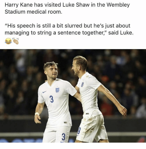 """kane: Harry Kane has visited Luke Shaw in the Wembley  Stadium medical room  """"His speech is still a bit slurred but he's just about  maneging to string asntence together'sald Luke."""