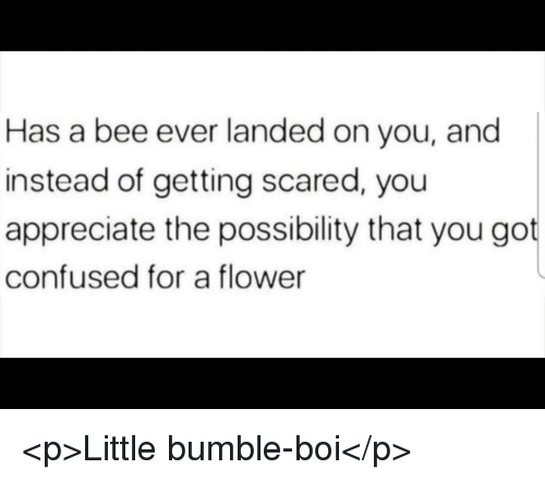Confused, Appreciate, and Flower: Has a bee ever landed on you, and  instead of getting scared, you  appreciate the possibility that you got  confused for a flower <p>Little bumble-boi</p>