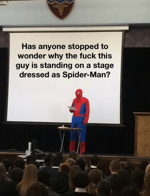 Spider, SpiderMan, and Fuck: Has anyone stopped to  wonder why the fuck this  guy is standing on a  stage  dressed as Spider-Man?
