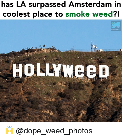 Smoke Weed: has LA surpassed Amsterdam in  coolest place to smoke weed?!  MARIJUANA.TV  HOLLYweep 🙌 @dope_weed_photos