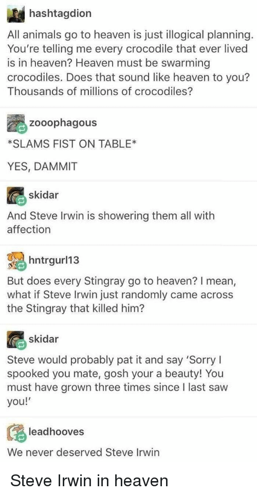 Animals, Heaven, and Saw: hashtagdion  All animals go to heaven is just illogical planning  You're telling me every crocodile that ever lived  is in heaven? Heaven must be swarming  crocodiles. Does that sound like heaven to you?  Thousands of millions of crocodiles?  Zooophagous  SLAMS FIST ON TABLE*  YES, DAMMIT  skidar  And Steve Irwin is showering them all with  affection  hntrgurl13  But does every Stingray go to heaven? I mean,  what if Steve Irwin just randomly came across  the Stingray that killed him?  skidar  Steve would probably pat it and say 'Sorry  spooked you mate, gosh your a beauty! You  must have grown three times since I last saw  you!  leadhooves  We never deserved Steve Irwin <p>Steve Irwin in heaven</p>