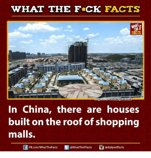 Ed, Edd n Eddy: HAT THE FCK FACTS  www2dailyma  co.uk  mage Source  In China, there are houses  built on the roof of shopping  malls.  Ed @What The Facts  adiplywtffacts  FB.com/What'TheFacts