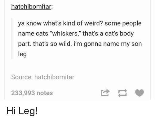 "body part: hatchibomitar:  ya know what's kind of weird? some people  name cats ""whiskers."" that's a cat's body  part. that's so wild. i'm gonna name my son  leg  Source: hatchibomitar  233,993 notes Hi Leg!"