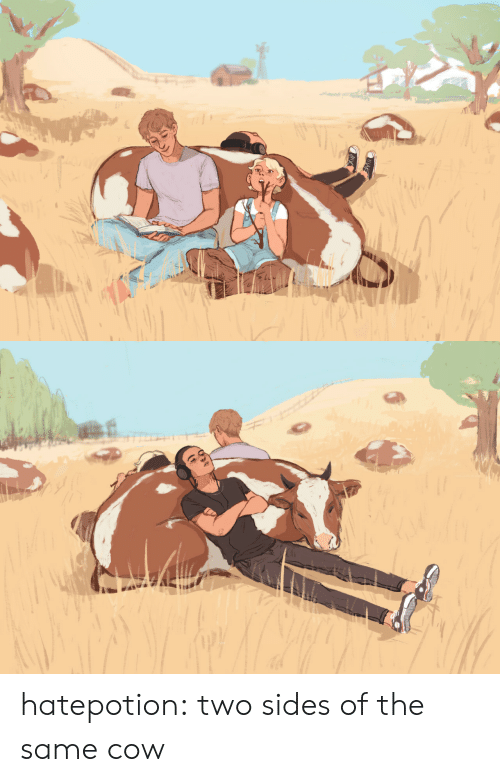 cow: hatepotion: two sides of the same cow