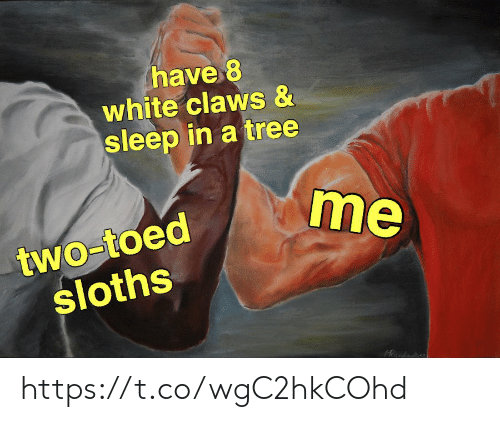 Sleep In: have 8  white claws &  sleep in a tree  me  two-toed  sloths  Rnda https://t.co/wgC2hkCOhd