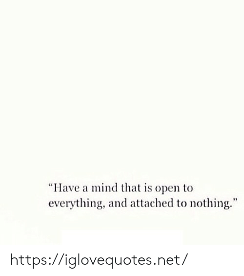 "Mind, Net, and Open: ""Have a mind that is open to  everything, and attached to nothing."" https://iglovequotes.net/"