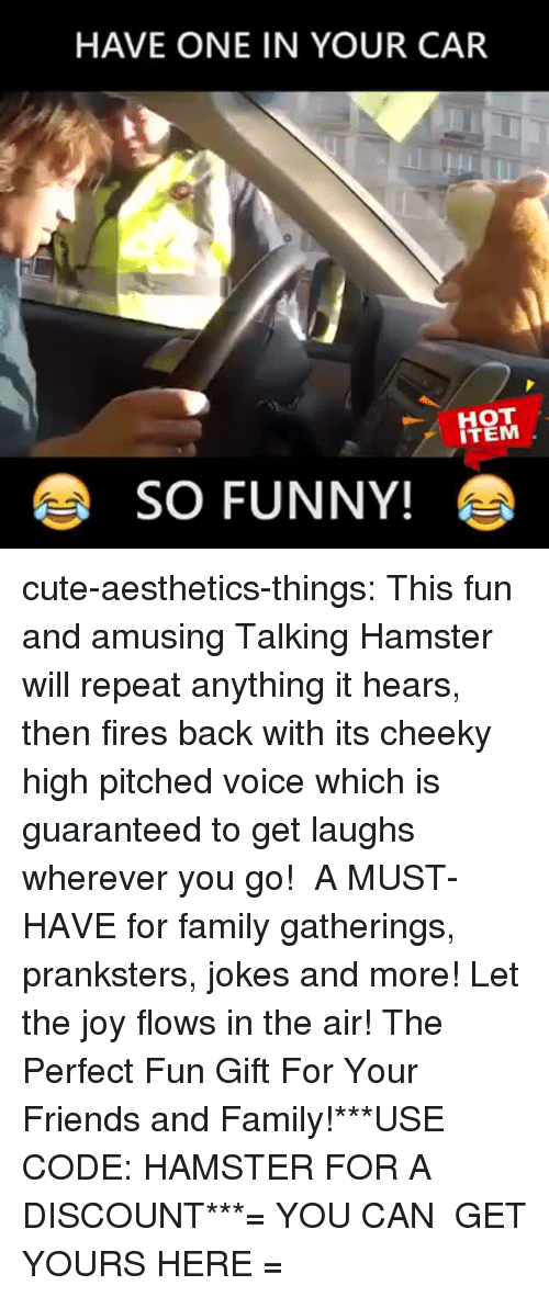 Cute, Family, and Friends: HAVE ONE IN YOUR CAR  ITEM  SO FUNNY! cute-aesthetics-things:  This fun and amusing Talking Hamster will repeat anything it hears, then fires back with its cheeky high pitched voice which is guaranteed to get laughs wherever you go! A MUST-HAVE for family gatherings, pranksters, jokes and more! Let the joy flows in the air! The Perfect Fun Gift For Your Friends and Family!***USE CODE: HAMSTER FOR A DISCOUNT***= YOU CAN GET YOURS HERE =