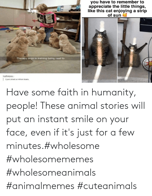 Have Some: Have some faith in humanity, people! These animal stories will put an instant smile on your face, even if it's just for a few minutes.#wholesome #wholesomememes #wholesomeanimals #animalmemes #cuteanimals