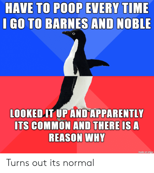 Apparently, Poop, and Common: HAVE TO POOP EVERY TIME  I GO TO BARNES AND NOBLE  LOOKED IT UP AND APPARENTLY  ITS COMMON AND THERE IS A  REASON WHY  made on imgur Turns out its normal