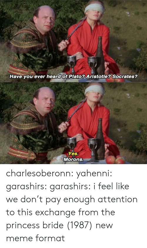 Plato: Have you ever heard of Plato? Aristotle? Socrates?   Yes.  Morons. charlesoberonn: yahenni:  garashirs:  garashirs: i feel like we don't pay enough attention to this exchange from the princess bride (1987) new meme format