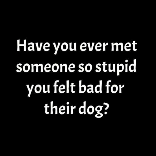 Bad, Dank, and 🤖: Have you ever met  someone so stupid  you felt bad for  their dog?