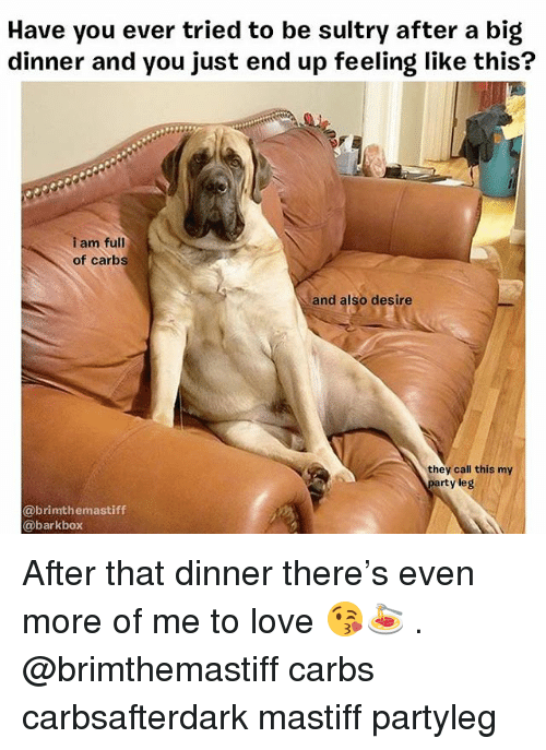 Love, Memes, and 🤖: Have you ever tried to be sultry after a big  dinner and you just end up feeling like this?  am full  of carbs  and also desire  they call this my  ty leg  @brimthemastiff  @barkbox After that dinner there's even more of me to love 😘🍝 . @brimthemastiff carbs carbsafterdark mastiff partyleg