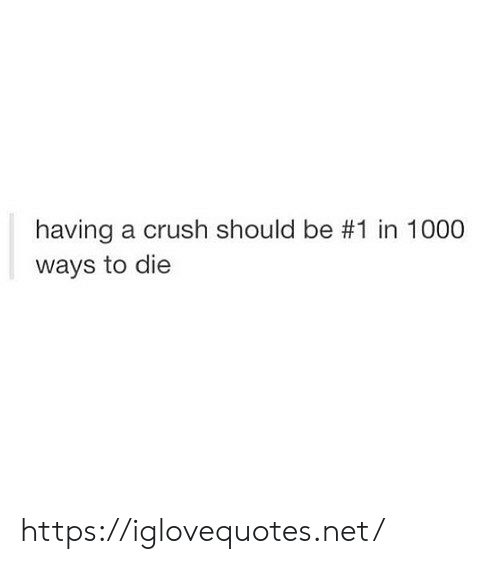 Crush, Net, and 1000 Ways to Die: having a crush should be #1 in 1000  ways to die https://iglovequotes.net/