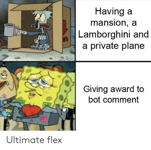 Lamborghini: Having a  mansion, a  Lamborghini and  a private plane  Giving award to  bot comment  ODD Ultimate flex