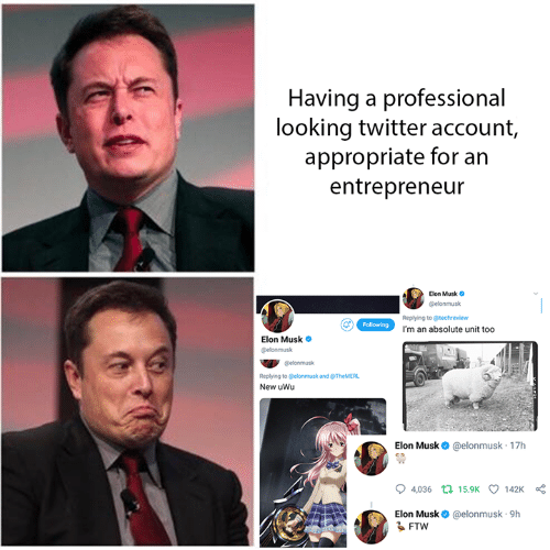 Entrepreneur: Having a professional  looking twitter account,  appropriate for an  entrepreneur  Elon Musk o  @elonmusk  Replying to @techreview  I'm an absolute unit too  Elon Musk  elonmusk  @elonmusk  Replying to Celonmusk and @TheMERL  New uWu  Elon Musk @elonmusk 17h  04,036  15.9K  142K  Elon Musk@elonmusk 9h  るFTW