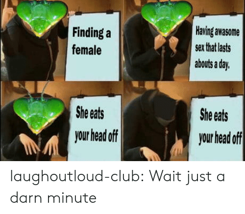 Club, Head, and Sex: Having awasome  Finding a  sex that lasts  female  abouts a day.  She eats  She eats  your head off  your head off laughoutloud-club:  Wait just a darn minute