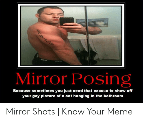Gay Picture: HAW  Mirror Posing  Because sometimes you just need that excuse to show off  your gay picture of a cat hanging in the bathroom Mirror Shots   Know Your Meme