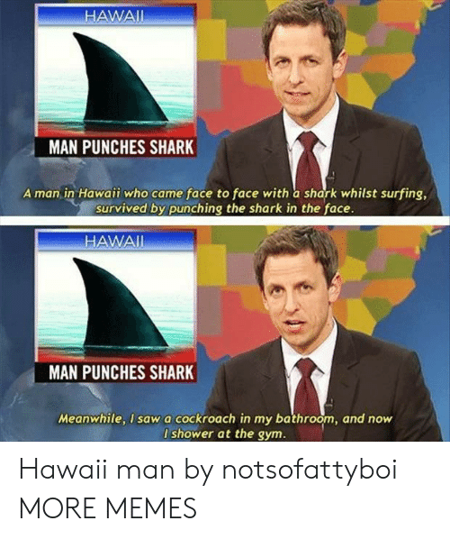 whilst: HAWAII  MAN PUNCHES SHARK  A man in Hawaii who came face to face with a shark whilst surfing,  survived by punching the shark in the face.  HAWAI  MAN  PUNCHES SHARK  Meanwhile, I sawa cockroach in my bathroom, and now  I shower at the gym. Hawaii man by notsofattyboi MORE MEMES