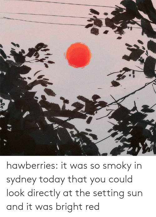 Directly: hawberries:  it was so smoky in sydney today that you could look directly at the setting sun and it was bright red