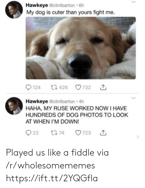 hawkeye: Hawkeye @clintbarton 6h  My dog is cuter than yours fight me.  t1 426  124  732  Hawkeye @clintbarton 4h  HAHA, MY RUSE WORKED NOWI HAVE  HUNDREDS OF DOG PHOTOS TO LOOK  AT WHEN I'M DOWN!  23  723  t 74 Played us like a fiddle via /r/wholesomememes https://ift.tt/2YQGfla