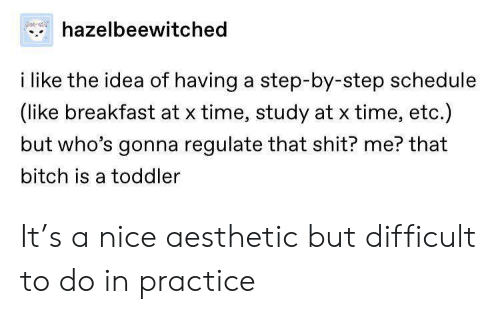 Bitch, Shit, and Aesthetic: hazelbeewitched  i like the idea of having a step-by-step schedule  (like breakfast at x time, study at x time, etc.)  but who's gonna regulate that shit? me? that  bitch is a toddler It's a nice aesthetic but difficult to do in practice