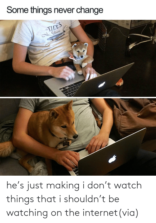On The Internet: he's just making i don't watch things that i shouldn't be watching on the internet(via)