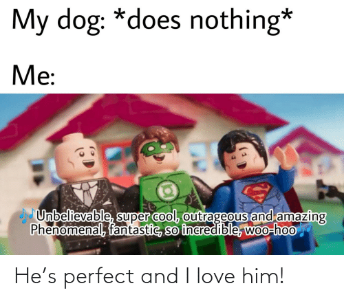 him: He's perfect and I love him!