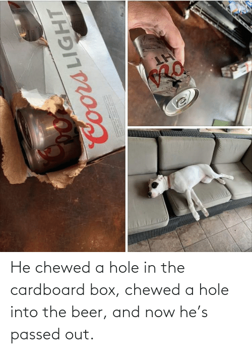 hole: He chewed a hole in the cardboard box, chewed a hole into the beer, and now he's passed out.